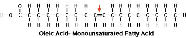 Monounsaturated-fat
